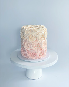 #005 ROSETTE OMBRE PINK